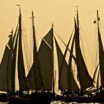 silhouet viel segeln