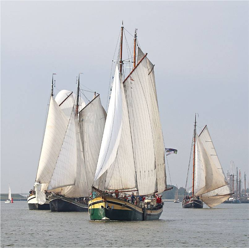 Regatta segeln
